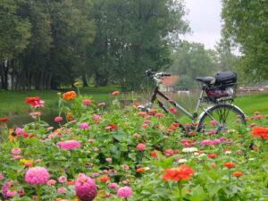Vihm, sõbrad, tiigid ning mõisaõunad …